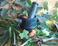 mortar and pestle and natural herbs on a table