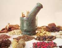 Naturopathic medicines in small piles on a table