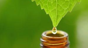 psoriasis naturopath Perth | Psoriasis homeopath Perth