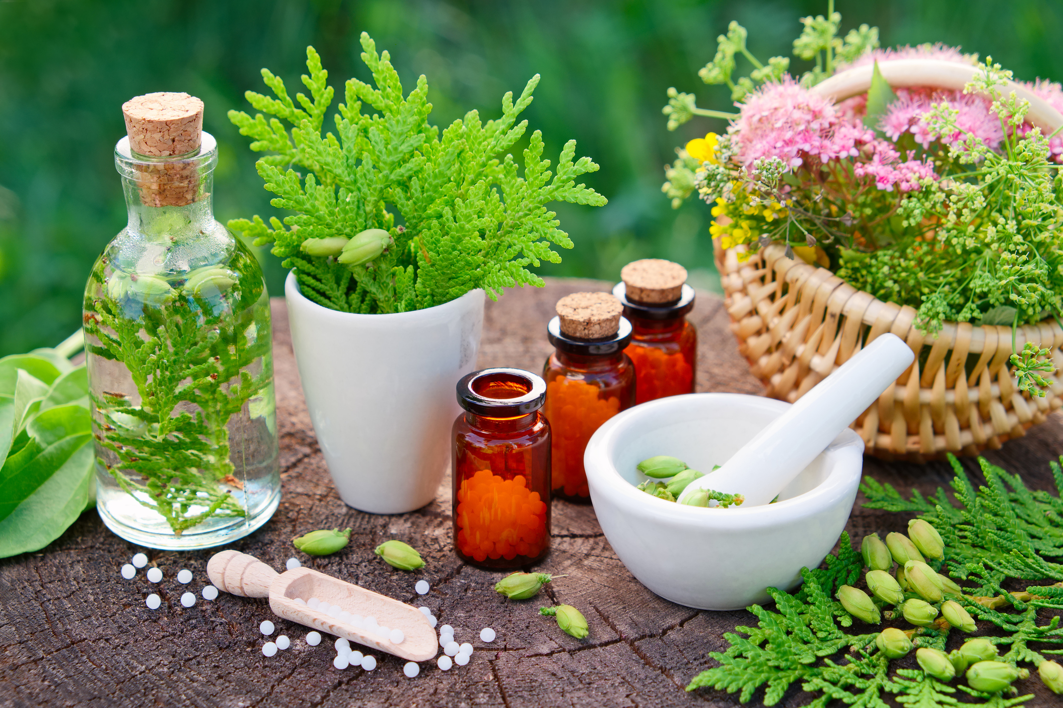 homeopathy research
