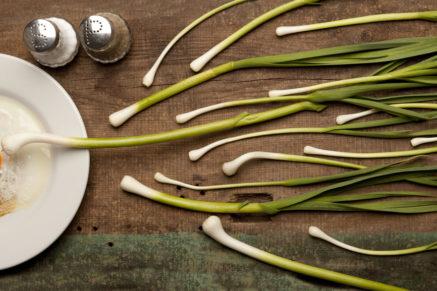 fertility diet & nutrition | Perth naturopath | homeopath
